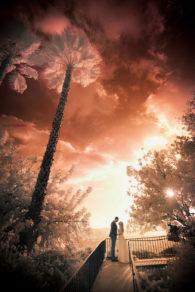 Los Angeles wedding photographers : infrared